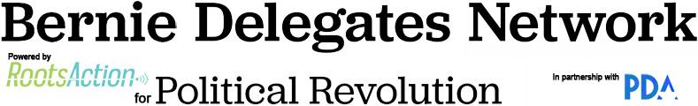 Bernie Delegates Network header